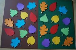17-06-28 Blätter Methode (11)