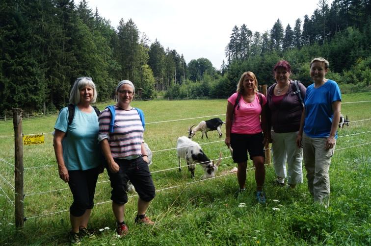 18-07-18 wildes-Weiba-Wandern Buchberg 31