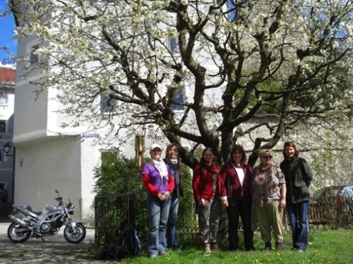 12-04-21 Mag. Laufen-Oberndorf (1)