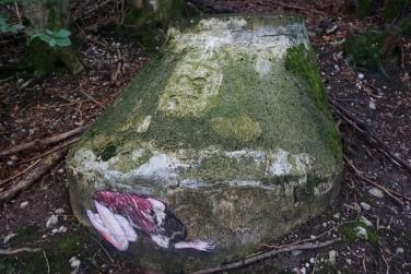Wildes-Weiba-Wandern Nockstein Koppl (11)