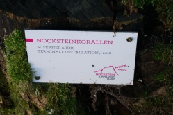 Wildes-Weiba-Wandern Nockstein Koppl (9)