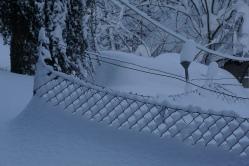 19-01-11 winterimpressionen (12)