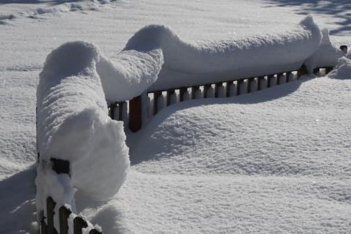 19-01-11 winterimpressionen (3)
