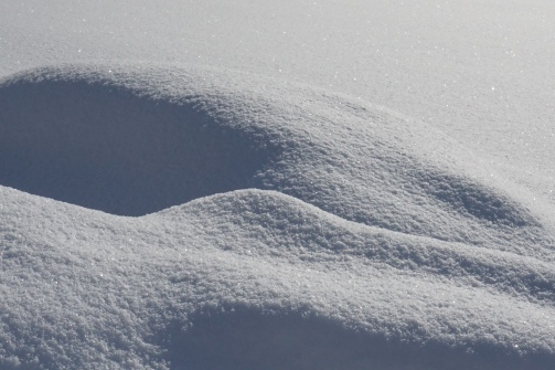 19-01-11 winterimpressionen (4)