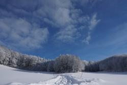19-01-11 winterimpressionen (6)