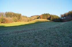Raunachts-Impressionen Haunsberg (15)